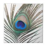 Prestigious Peacock Small Square Tile