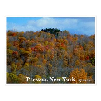 Preston, New York Postcard