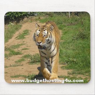 Presupuesto que recibe el cojín de ratón del tigre alfombrillas de ratones