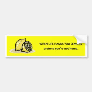 pretend-youre-not-home bumper sticker
