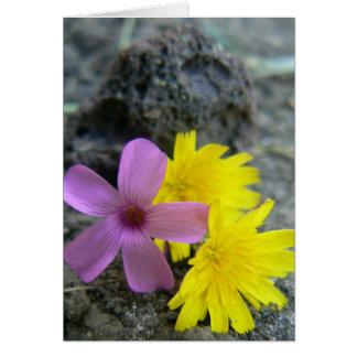 Prettiest Flower Card