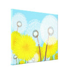 Pretty and Colorful illustration of Dandelions Gallery Wrapped Canvas