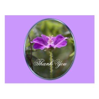 Pretty and elegant purple garden flower thank you