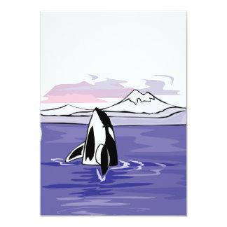 pretty artic orca scene card