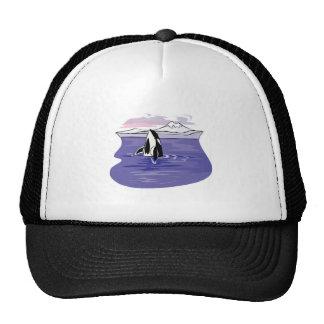 pretty artic orca scene trucker hat