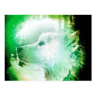 Pretty Artistic Wolf Pup Face Green and White Postcard