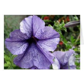 Pretty As a Petunia Card
