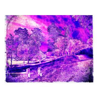 Pretty As A Purple Picture. Postcard