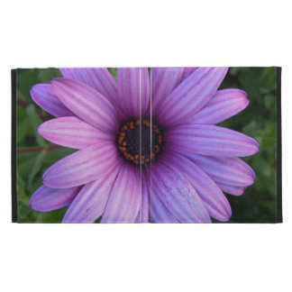 Pretty Aster Flowers iPad Cases