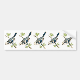 Pretty Azure Blue Bird Bumper Sticker