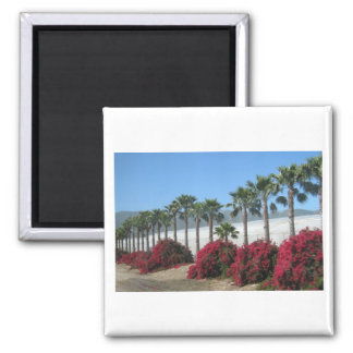 Pretty Baja California Palm Trees and Flowers 2 Inch Square Magnet