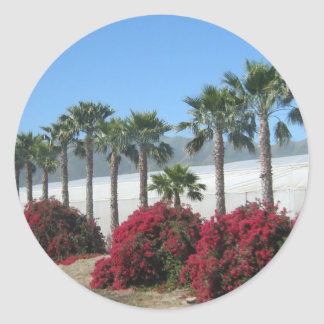 Pretty Baja California Palm Trees and Flowers Classic Round Sticker