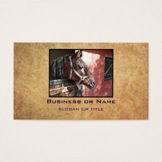 Pretty Bay Horse in a Sunlit Stable Business Card