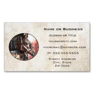 Pretty Bay Horse in a Sunlit Stable Business Card Magnet