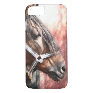 Pretty Bay Horse in a Sunlit Stable iPhone 8/7 Case