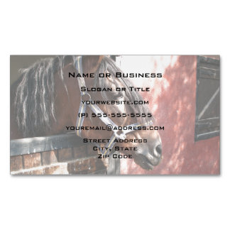 Pretty Bay Horse in a Sunlit Stable Magnetic Business Card