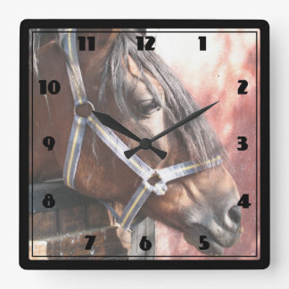 Pretty Bay Horse in a Sunlit Stable Square Wall Clock