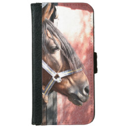 Pretty Bay Horse in a Sunlit Stable Wallet Phone Case For iPhone 6/6s