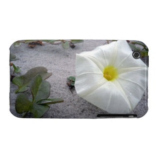 Pretty Beach Morning Glory iPhone 3 Covers