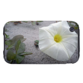 Pretty Beach Morning Glory Tough iPhone 3 Covers
