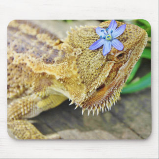Pretty Bearded Dragon Mouse Pad