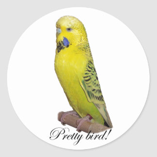 Pretty Bird Budgie sticker