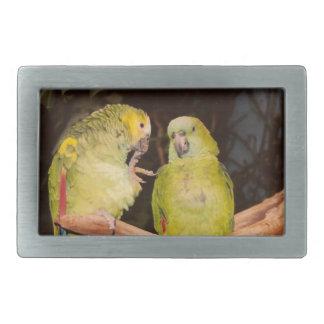 Pretty Bird Couple Belt Buckle