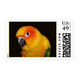 Pretty Bird Postage