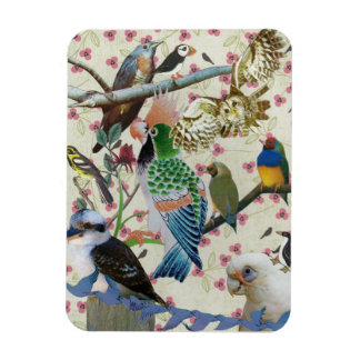 Pretty Birdies Magnets