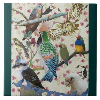 Pretty Birdies Tiles