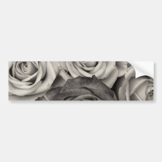 Pretty Black and White Roses Bouquet of Flowers Bumper Sticker