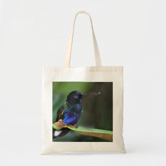 Pretty Black, Blue and Green Hummingbird Tote Bag
