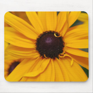 Pretty Black-Eyed Susan Mouse Pad