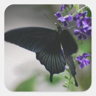 Pretty Black Swallowtail Butterfly Stickers