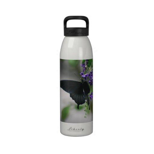 Pretty Black Swallowtail Butterfly Water Bottles