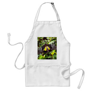 pretty black yellow butterfly photograph adult apron