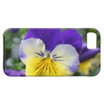 pretty blue and yellow pansy flower iPhone 5 covers
