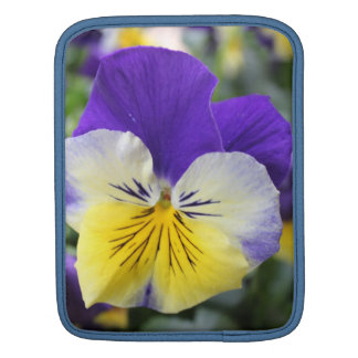 pretty blue and yellow pansy flower iPad sleeve