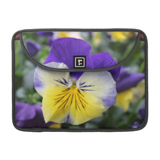 pretty blue and yellow pansy flower MacBook pro sleeve