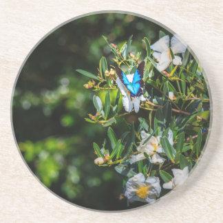Pretty Blue Butterfly on Flowers Coaster