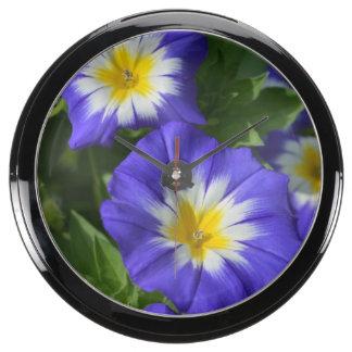 Pretty Blue Ensign Morning Glories Aquavista Clock