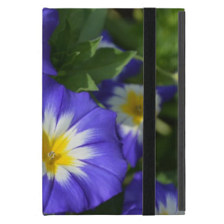 Pretty Blue Ensign Morning Glories Covers For iPad Mini