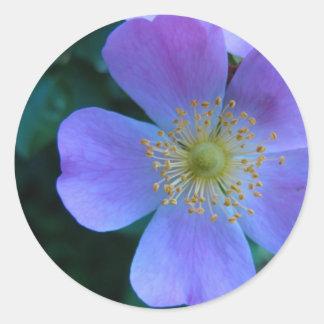 Pretty Blue Flower Sticker