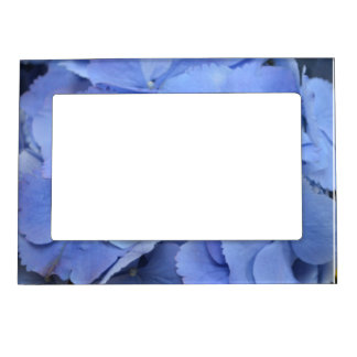 Pretty Blue Hydrangea Picture Frame Magnet