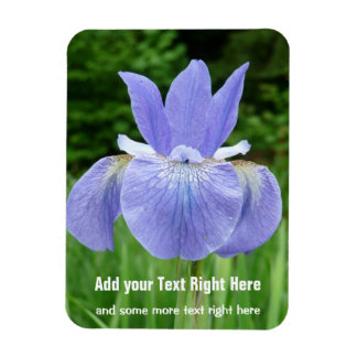 Pretty Blue Indigo Siberian Iris Flower Bloom Vinyl Magnet