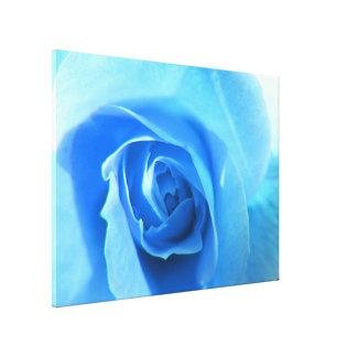 pretty blue rose flower macro picture. canvas print