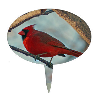 Pretty Boy Male Cardinal Cake Topper
