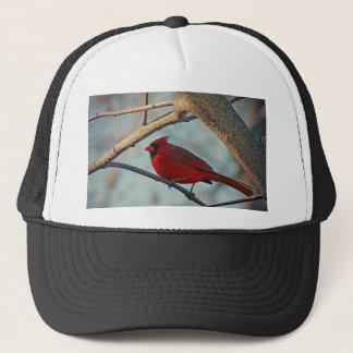 Pretty Boy Male Cardinal Trucker Hat