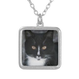 Pretty Boy Tuxedo Kitty Custom Necklace