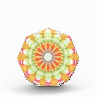 Pretty Brights Flower Kaleidoscope Award